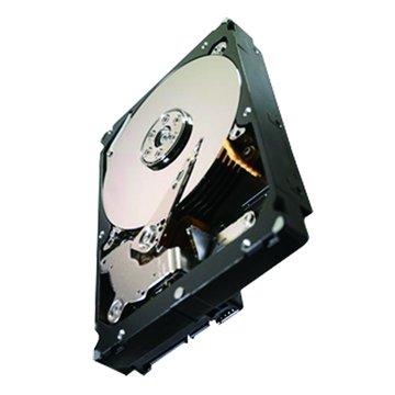 Seagate 希捷 1TB 3.5吋 64MB 7200轉 SATAIII 企業級硬碟(ST1000NC000-3Y/P)