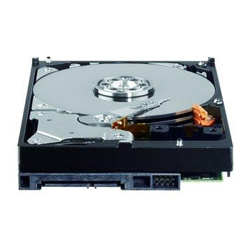 WD 威騰 1TB 3.5吋 64MB 7200轉 SATAIII 黑標硬碟(WD1002FAEX)