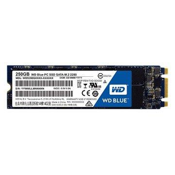 WD 威騰 250G M.2 2280 SATA3 SSD(藍標)