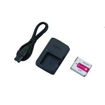 SONY 新力牌 ACC-CSFG電池超值組