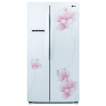 LG GR-BL65M 638對開變頻冰箱(福利品出清)