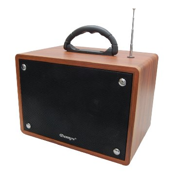 Dennys WS-350BT 藍芽卡拉OK音響(附無線麥克風)